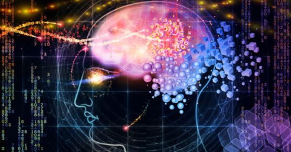 Sapte lucruri interesante despre creierul nostru si activitatea lui