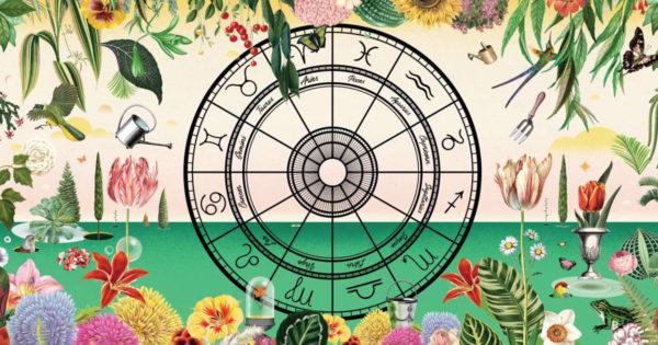 Horoscopul florilor, ce flori sa oferi in functie de zodie!