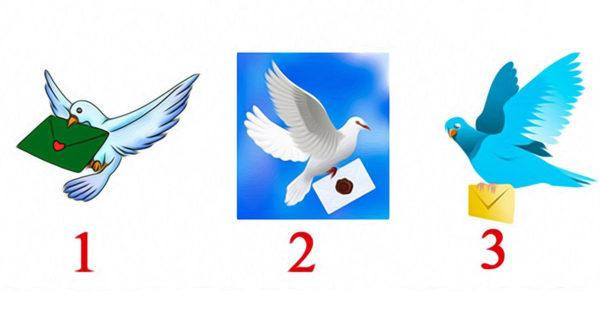 Alege unul dintre cei 3 porumbei voiajori si află ce mesaj ți-a adus!