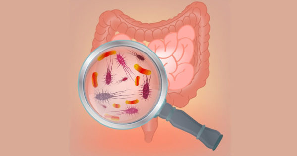 5 moduri de a restabili microflora intestinală pentru a normaliza digestia