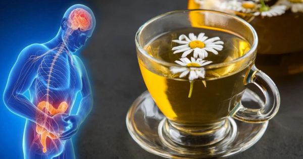 Motivele pentru care bunicile noastre adoră ceaiul de mușețel: 15 proprietăți benefice sănătății