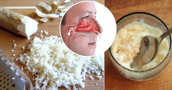 Principalele beneficii ale consumului de hrean. Ajută creierul, oasele și luptă împotriva infecțiilor