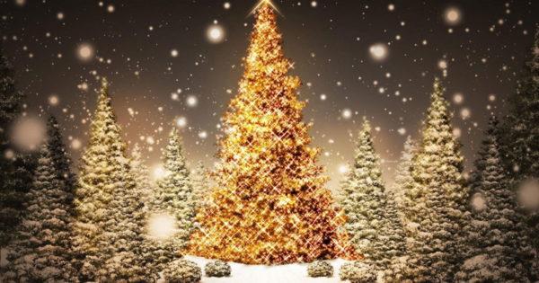 Cum să împodobești un brad de Crăciun pentru a atrage noroc, bani și dragoste în 2021