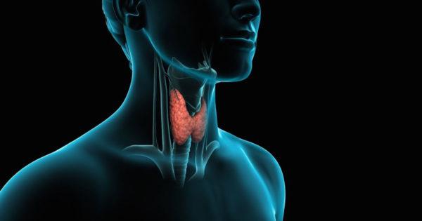 11 alimente benefice pentru glanda tiroidă, chiar dacă nu ai probleme