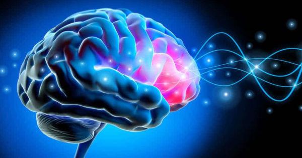 3 sfaturi de la un neurochirurg: cum să îmbunătățim funcționarea creierului