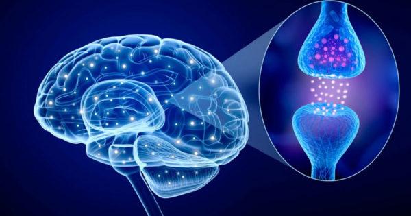 5 obiceiuri care îmbunătățesc funcția creierului conform științei