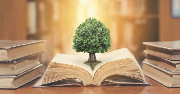 5 sfaturi din înțelepciunea populară de aplicat în fiecare zi
