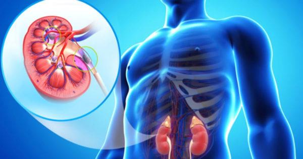 10 obiceiuri care ne distrug rinichii. De multe ori le facem fără să ne dăm seama!