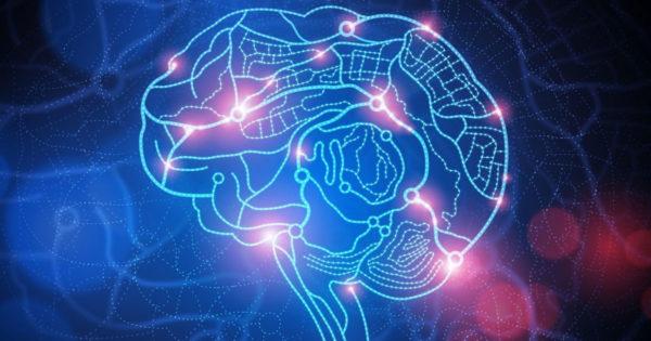 Neurobiologul a explicat care este cel mai important factor care ne poate schimba creierul și îmbunătăți starea de spirit