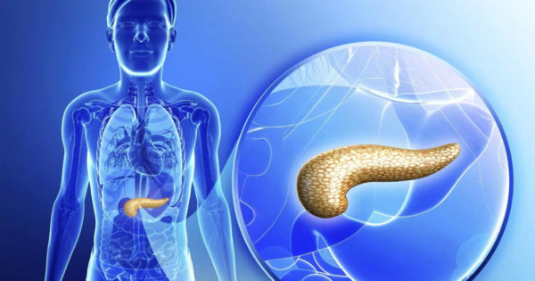 Pentru sănătatea pancreasului, trebuie să consumați aceste 8 alimente