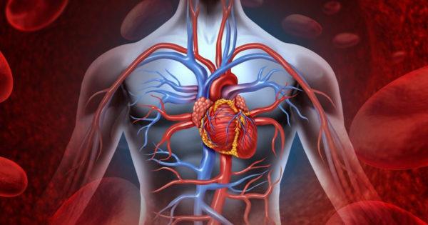 O rețetă eficientă de la vindecătorii japonezi scade tensiunea arterială ridicată și curăță arterele