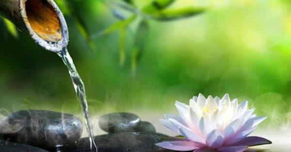 10 reguli Zen care îți vor schimba viața. Nu lăsați pe nimeni să vă strice Zen-ul!