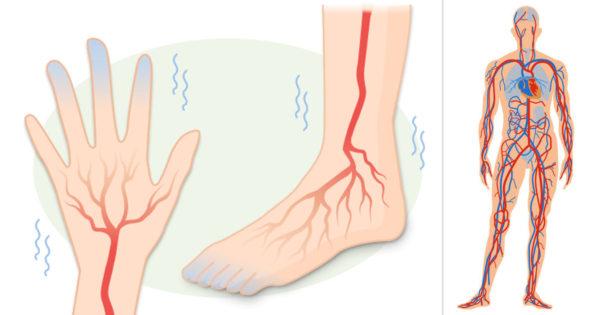 Circulație slabă, mâini și picioare reci? Iată ce puteți face pentru a remedia această problemă!