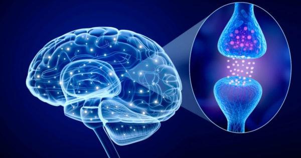 10 lucruri uimitoare despre creierul nostru