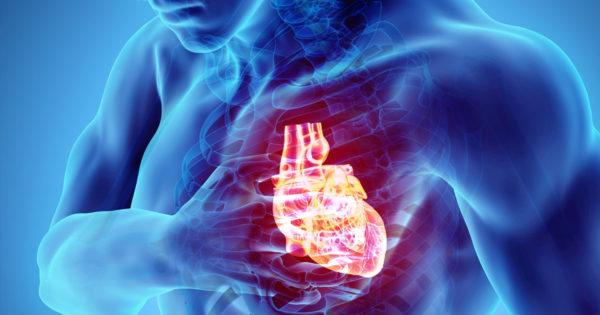 """10 curiozități despre corpul tău """"A cui inima bate mai repede? A femeii sau a bărbatului?"""""""