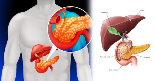 Cum să ai grijă de pancreasul tău: 7 reguli cheie